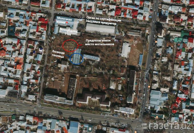 Карта территории «квадрата», внутри которого располагаются «Молочная кухня», Novopharma plus, предполагаемое место могильников, орган по сертификации пищевых продуктов и другие здания.
