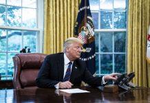 В США судьи заблокировали новые правила Трампа по грин-картам