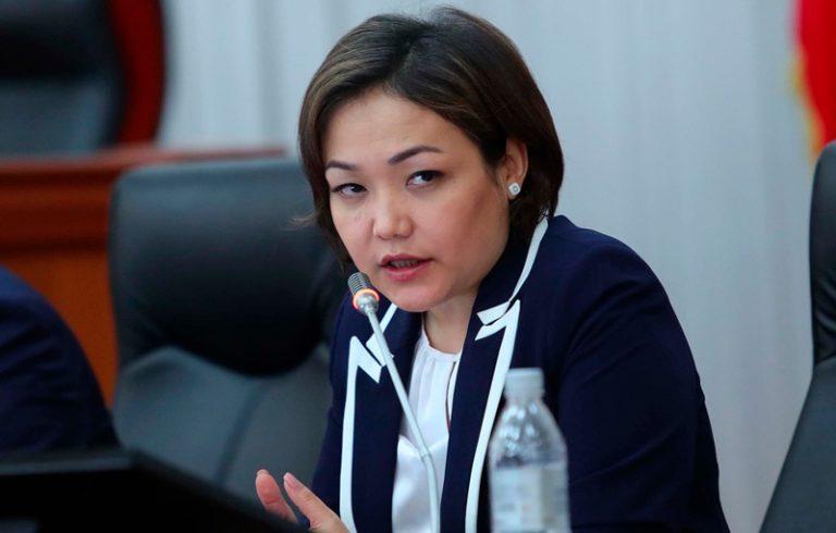 Вице-спикер Кыргызстана: «Мигранты из Узбекистана сделали бизнес на кыргызских паспортах в РФ»